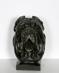Cane Corso Dog Bust, Patinated Bronze Sculpture