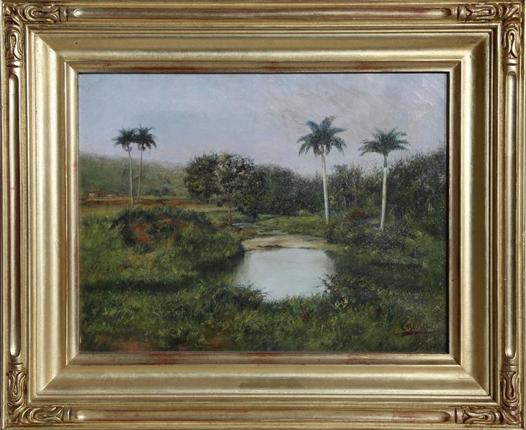 Tropical Landscape (Cuba)