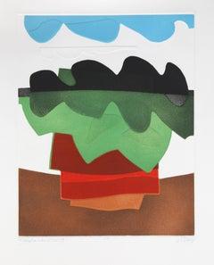 Abstract Aquatint Etching by Bertrand Dorny