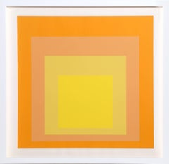 Interaction of Color: Homage to the Square