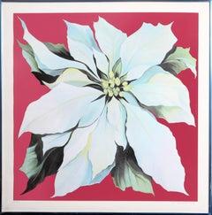 Lowell Nesbitt - White Poinsettia