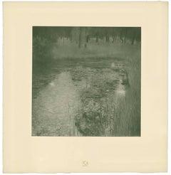 "H.O. Miethke Das Werk folio ""The Swamp"" collotype print"