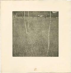 """H.O. Miethke Das Werk folio """"Farmhouse With Birch Trees"""" collotype print"""