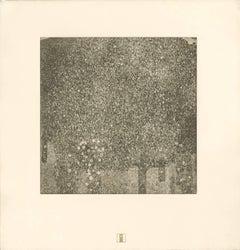 "H.O. Miethke Das Werk folio ""Rose"" collotype print"
