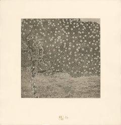 "H.O. Miethke Das Werk folio ""Golden Apple Tree"" collotype print"