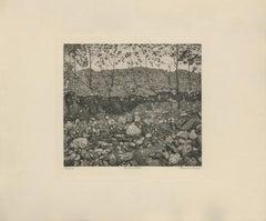 """Mountain Stram"" Copper Plate Heliogravure"