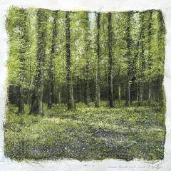 Bluebells Forest landscape painting