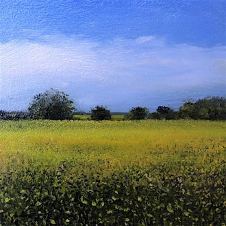 Mustard Study  original  landscape miniature painting