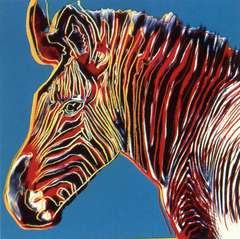 Grevy's Zebra from Endangered Species
