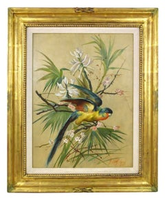Joseph Wolf, Red, Blue and Yellow Parrot Set Against Foliage.