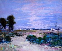 Extremadura landscape spain- original acrylic painting