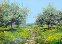 Olive Trees on the Island of Paros, Greece (Oliviers sur l'Ile de Paros, Grece)