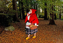 Not-So-Little Red Riding Hood (from the Fallen Princesses series)