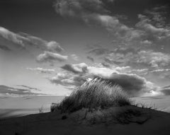 Eel Creek Dunes IV, Oregon