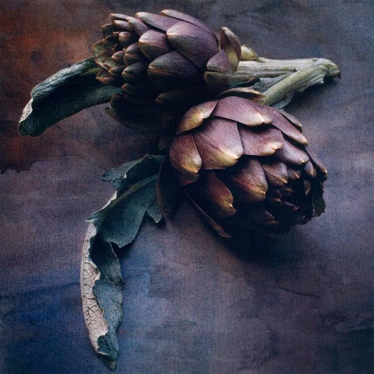 Cy DeCosse Color Photograph - Springtime Artichokes