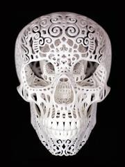 Crania Anatomica Filigre: Binary