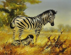 Zebra mare and foal. A tender wildlife scene in the midst of scorched grassland.