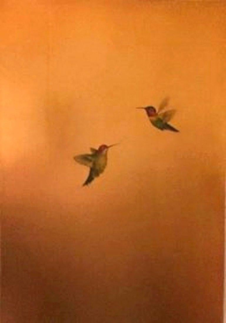 Two Hummers in Golden Glow