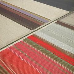 Veld 23, Noordoostpolder, Netherlands