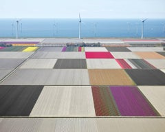 Turbines and Tulips 1, The Netherlands