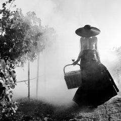 Woman Holding Dress Walking through Vineyard