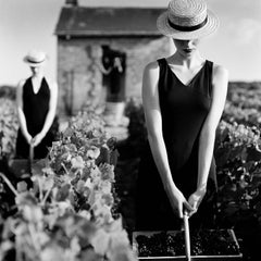 Women with baskets in vineyard, Reims, France