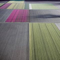 Veld 25, Noordoostpolder, Netherlands