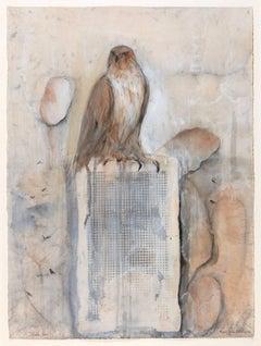 Studio Bird