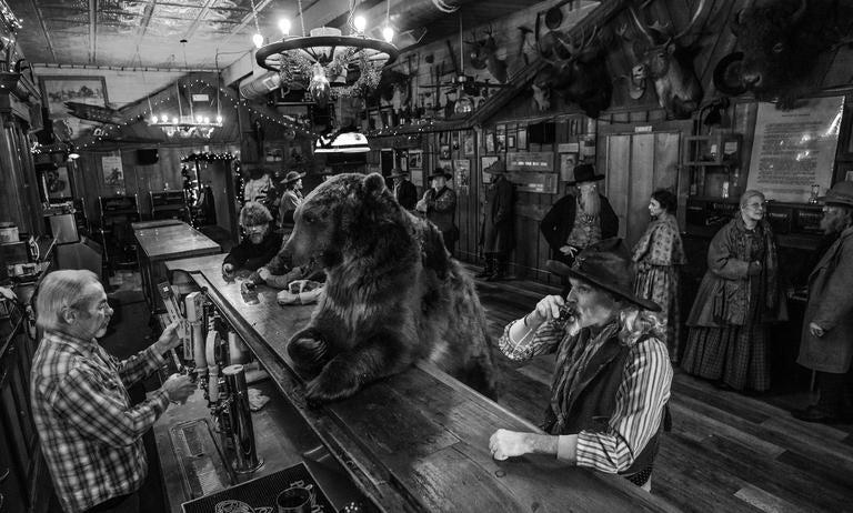 I've Got One....A Bear Walks Into a Bar
