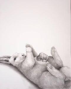 Bunny Bison