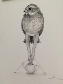 Bird With Long Legs