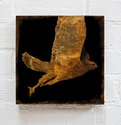 Flying Hawk #1/6
