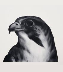 Falcon (After Landseer)