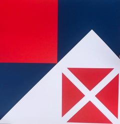 GYE Red Blue White Forest Flag