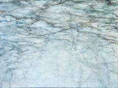 C. Cinton, 'Woodland Water Flooded Brook,' acrylic on canvas