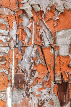 """Urban Decay"", color photograph, peeling paint, orange, electical, switch"
