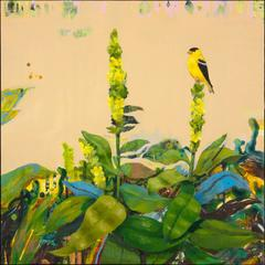 Goldfinch with Mullein