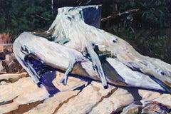 Driftwood, Schoodic