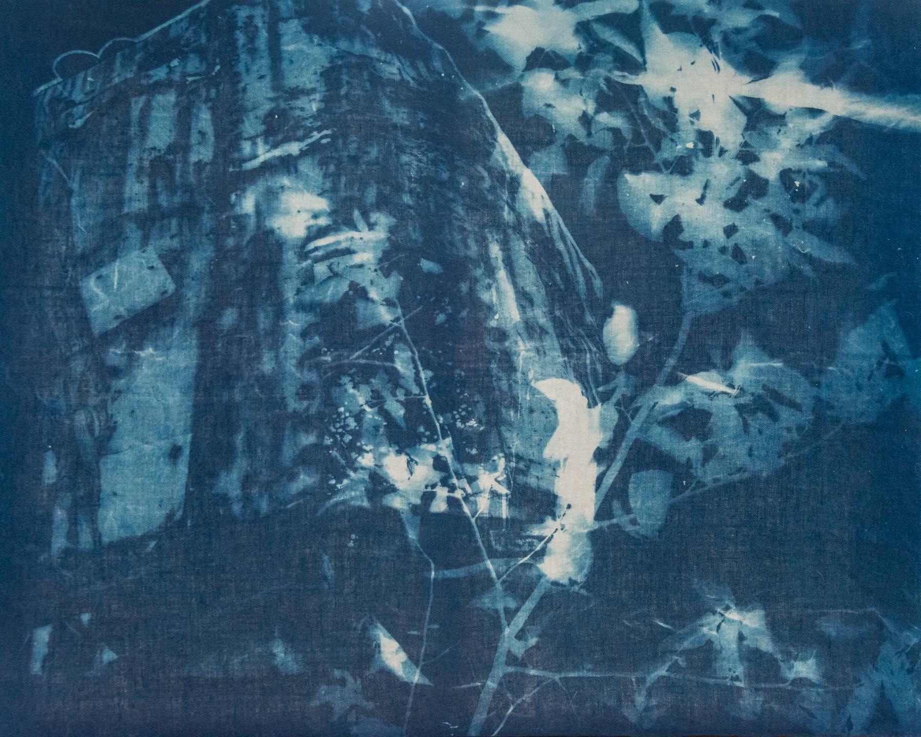 """""""""""Crane 1"""", landscape, cyanotype, photograph, linen, blue"""