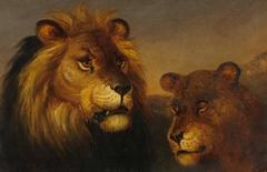 Lion & Lioness in Sunset Landscape - Early Safari painting