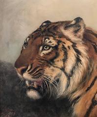 Original Antique English Oil Painting Head Portrait of Tiger