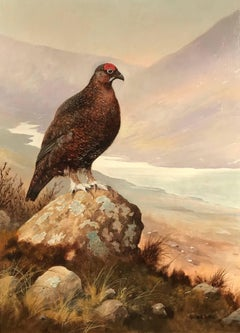 Highland Grouse Scotland original signed oil painting