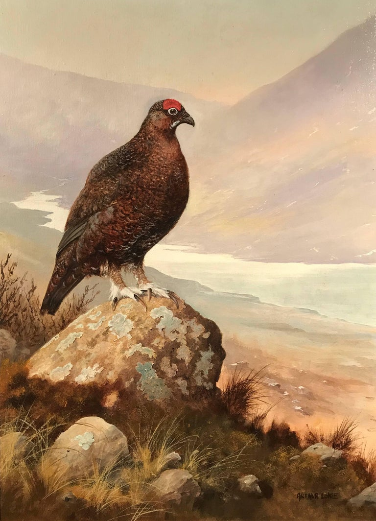 Arthur Lokie Highland Grouse Scotland Original Signed