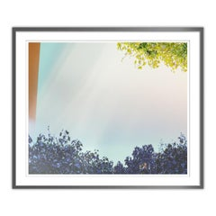 Filters Series - Framed Abstract Nature Photograph - Archival Print