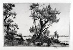 Beach and Willows