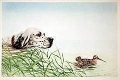 French Spaniel in Pursuit of a Woodcock