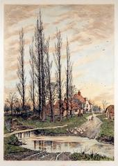 Where the Poplars Kiss the Sky