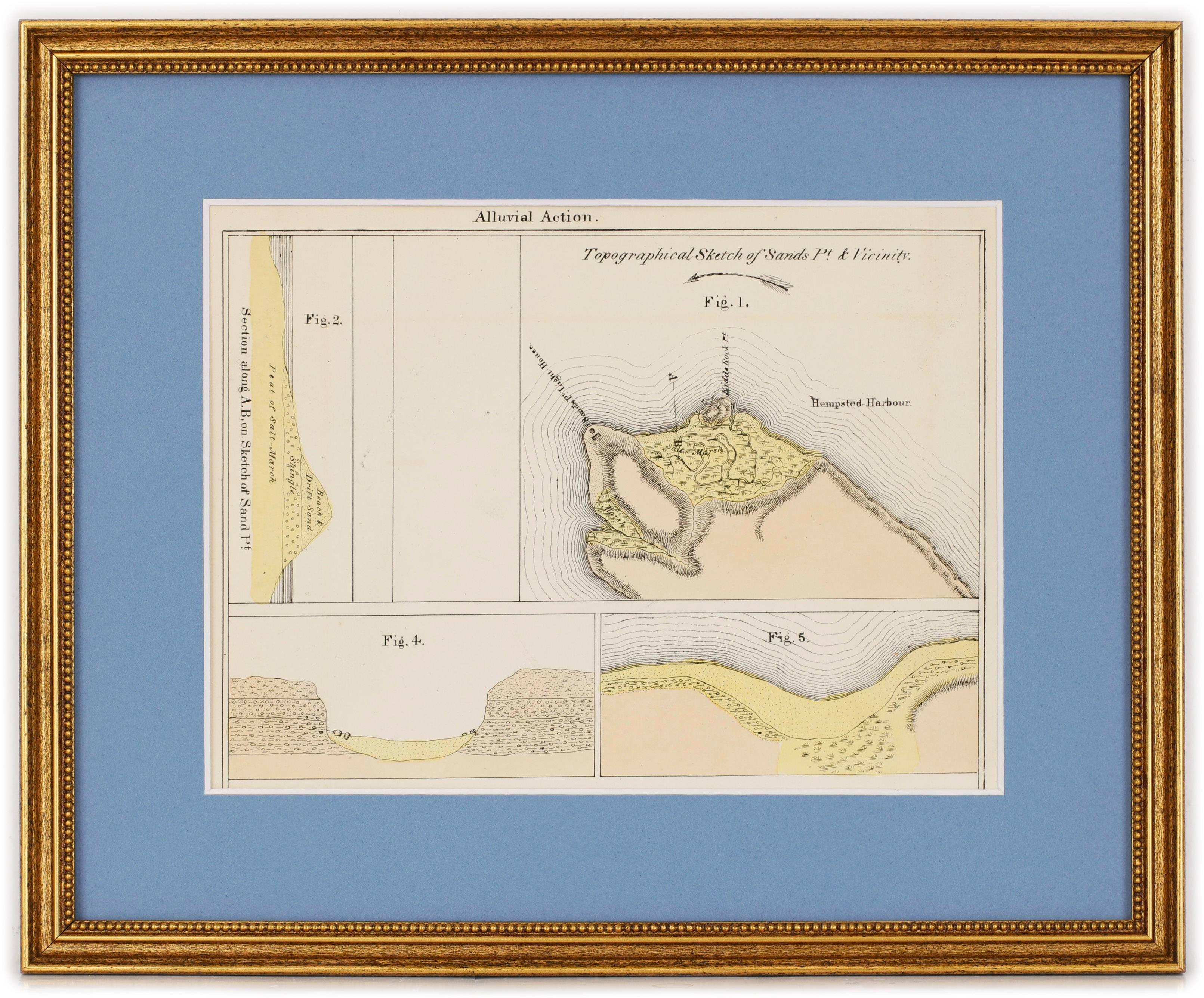 Topographical Map of Sands Point, Long Island and Vicinity
