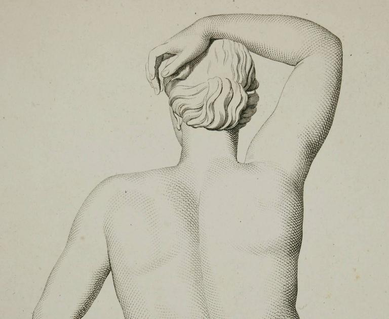 Apollo from Behind - Baroque Print by Unknown