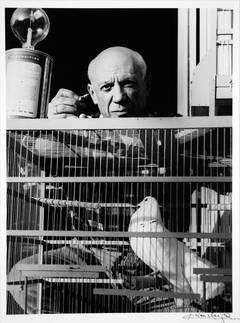 Picasso et les Columbes by Lucien Clergue